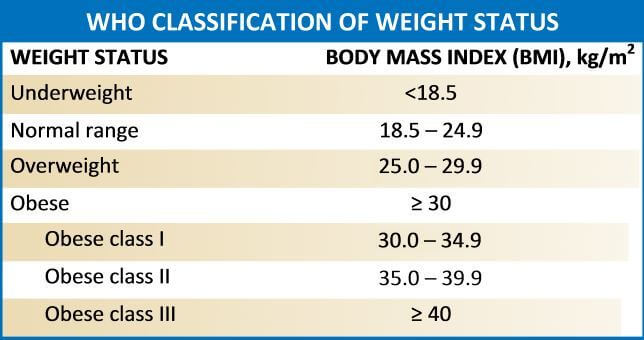 The 5 Best Weight Scales In 2020 To Calculate Your Bmi Body Fats