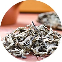 White Tea - Best Tea for Metabolism