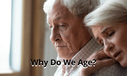 Why Do We Age? An Easy Explanation