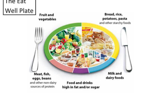 Leptin Diet: What Are 5 Rules of Leptin Diet?